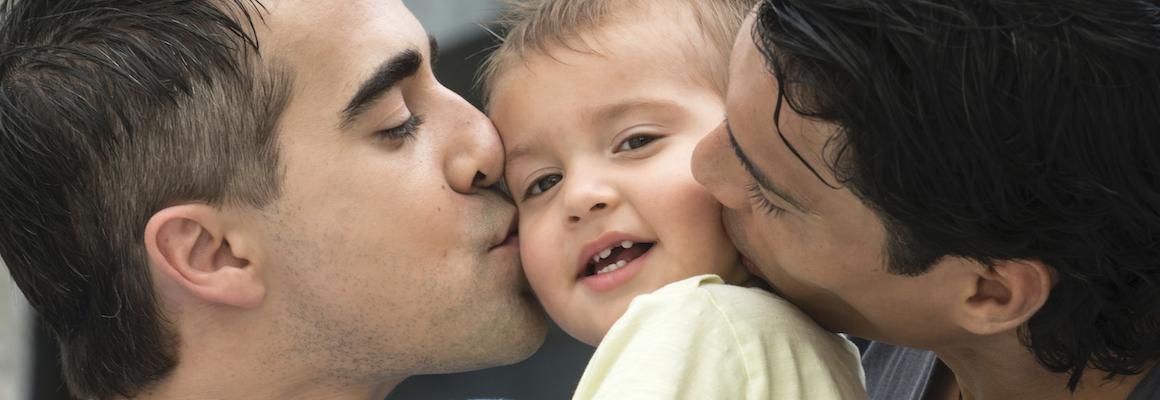 Arbeidsvoorwaarden roze gezinnen – presentatie 14 januari
